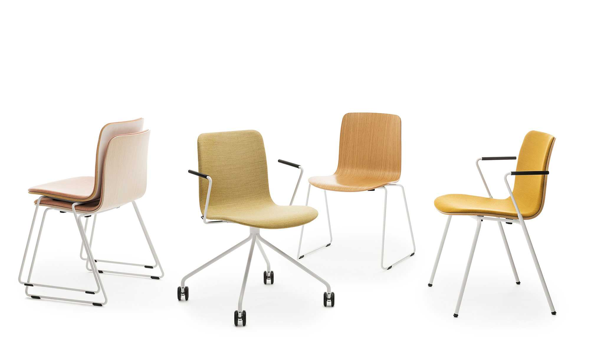 Sola family of chairs